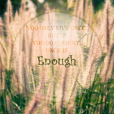wymowny: Meaningful quote on blurred meadow background, you only live once, but if you do the right, once is enough. Zdjęcie Seryjne