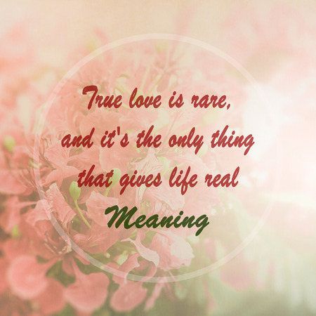 meaningful: Meaningful quote on pink flower background, True love is rare, and its the only thing that gives life real meaning Stock Photo