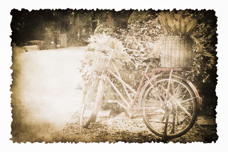burnt paper: An old bicycle in the garden on the old brown burnt paper isolated on white