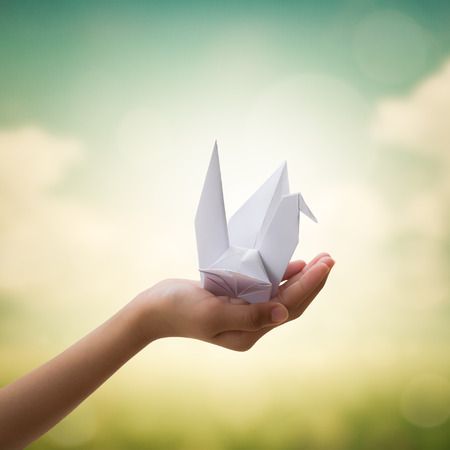 freedom concept: Origami bird on childrens hand with beautiful natural background, Freedom concept Stock Photo