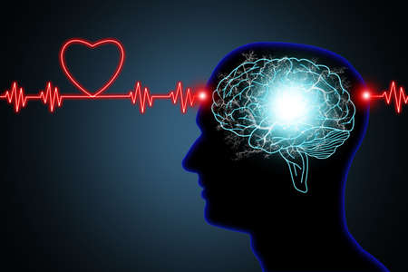 Human brain and nerve or blood vessel concept illustration in silhouette black head and neon red light effect heart shaped pulse line on dark blue background