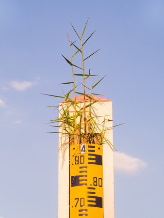 depth measurement: water level indicator or staff gauge and grass on the top clear blue sky.