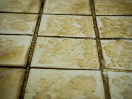 water stain: Close up of bathroom floor tile texture with water stain spot.