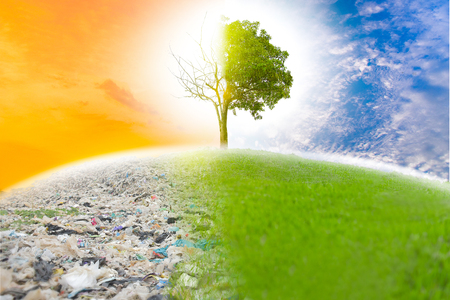 Garbage causes global warming if we do not help save the world. Next, the refreshing color will not be.