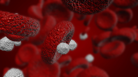 Illustration of white blood cells and red blood cells used in medicine or science