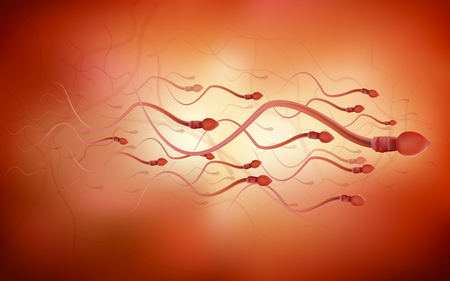One sperm is human semen. In the white back Stock Photo
