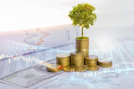 Der Baum wächst sowohl über den Fortschritt von Geld- und Finanzberichten als auch mit Finanzkonten, Geschäften und Investitionen auf dem Tisch des Anlegers. Front-Investment-Konzept
