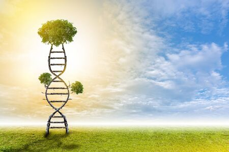 DNA is a natural tree background style.