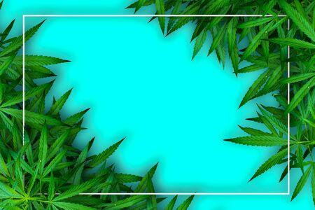 Marijuana leaf and hemp oil pictures dark background, beautiful background Reklamní fotografie
