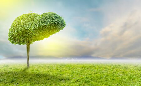 Realistic liver images are human green tree shapes about diseases and cirrhosis (environment).
