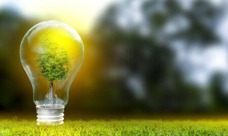 Erneuerbare Energien Konzept Tag der Erde oder Umweltschutz Hände schützen Wälder, die auf dem Boden wachsen und helfen, die Welt zu retten.