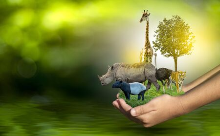 Wildlife Conservation Day Wild animals to the home. Or wildlife protection Stockfoto
