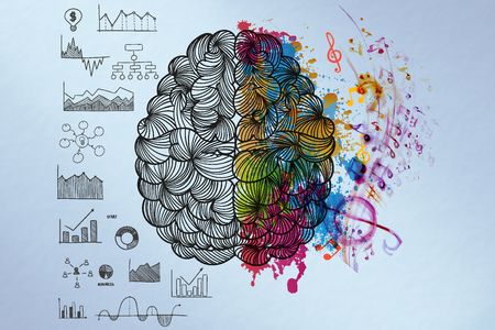 brain illustration: Creative and Analytical Thinking Concept : Right and Left Hemispheres.