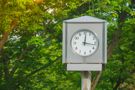 Time Management Concept : Clock tower in public park with green natural background. (Soft Focus)