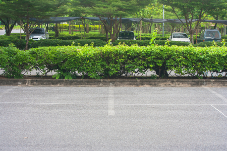 Empty space in parking lot at public park with green bush background. Stock Photo