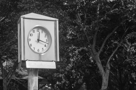 Time Management Concept : Clock tower in public park. (Black and White filter effect) Stok Fotoğraf - 82120834