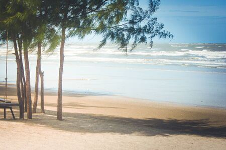 Houten stoel en pijnboomboom op het strand met overzees en blauwe hemelachtergrond. (Herfstfiltereffect)