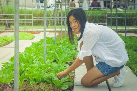 Zijaanzicht vrouw hand met spruit boom voorbereiden plant een boom op grond in tuin. (Herfstfiltereffect)