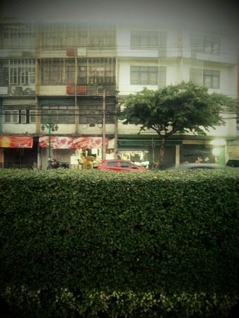 Building beside road