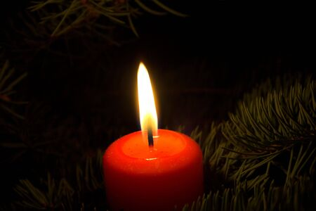 candle in christmas tree  photo