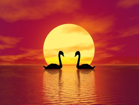afterglow: Red Sunset and swans (see more in my portfolio) Stock Photo