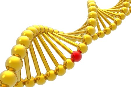 nucleotide: Red nucleotide from a DNA isolated in white background