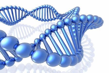 researches: render of DNA
