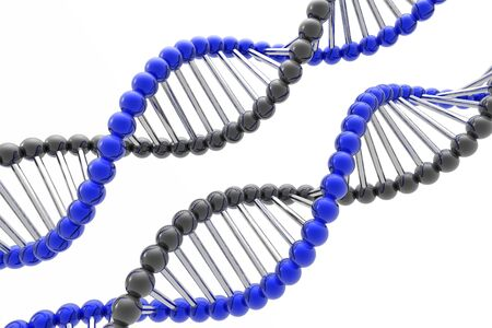 dna spiral Stock Photo - 3830255