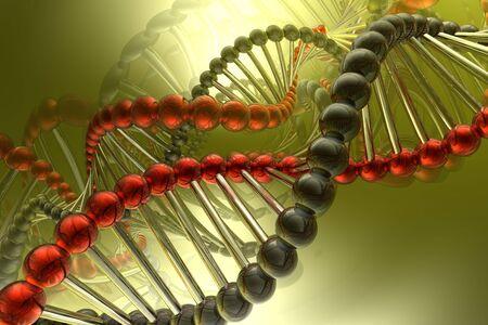 researches: spirale di DNA Archivio Fotografico