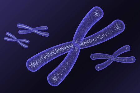cromosome Stock Photo - 3897399