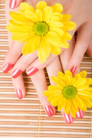 care for woman hands Stock Photo - 4000486