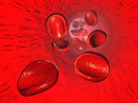 animal vein: red blood cells, 3d render