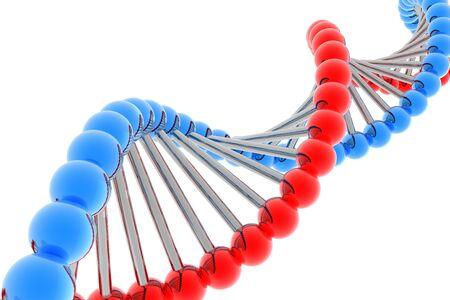render of DNA photo