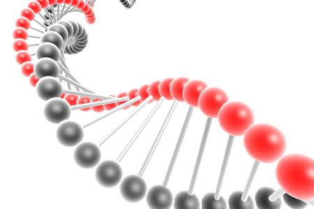 dna spiral Stock Photo - 4732365
