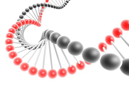 dna spiral Stock Photo - 4732348