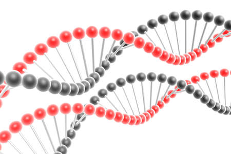 dna spiral Stock Photo - 4742060