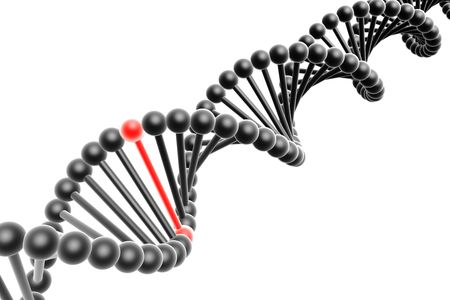 Red nucleotide from a DNA photo