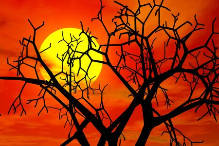 haloween: red sunset in haloween day Stock Photo