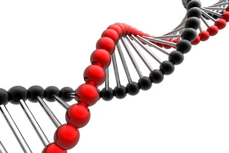 researches: dna spiral