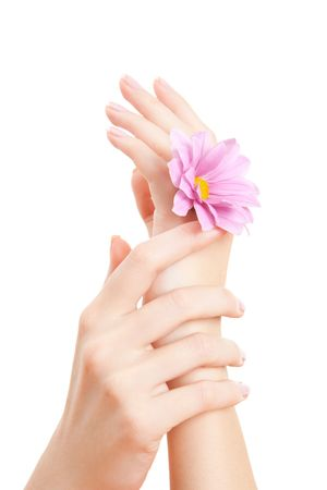 care for beautiful woman hands Stock Photo - 6103143
