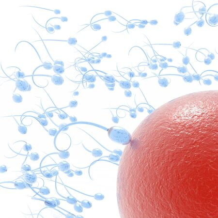 esperma: Ataque de esperma