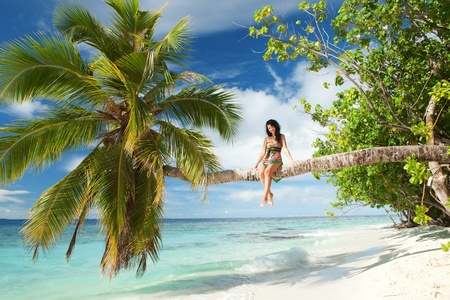 Fashion woman siting upon palm tree on the beach photo