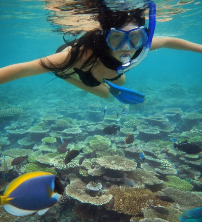 Young woman swimming with fishes on coral reef in blue water                 photo