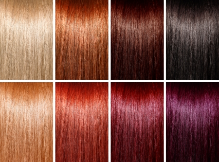 textura pelo: Ejemplo de diferentes colores de pelo Foto de archivo