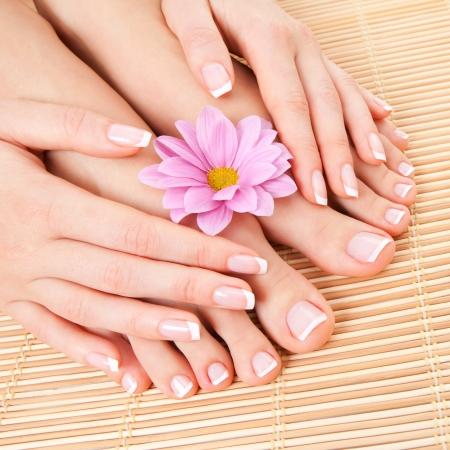 Pflege für schöne Frau Beine Standard-Bild - 19016820