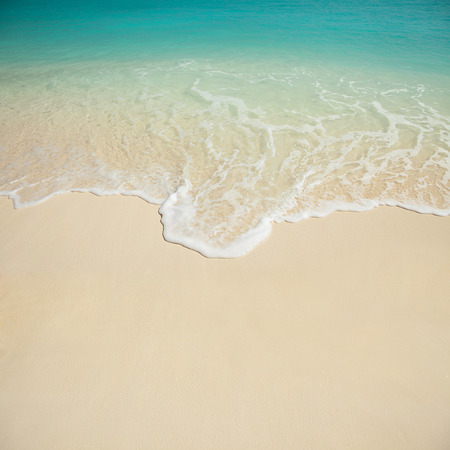 white beach: tropical beach Stock Photo