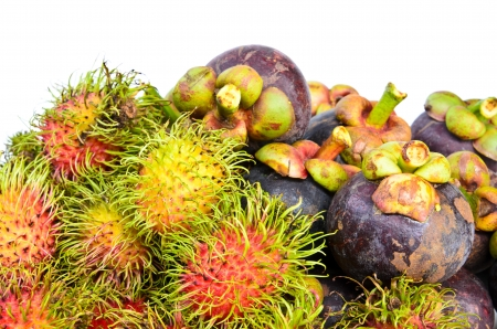 Tropical fruit Rambutan and mangosteen close up photo
