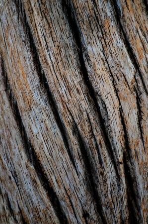 Dark Wood texture. Abstract background