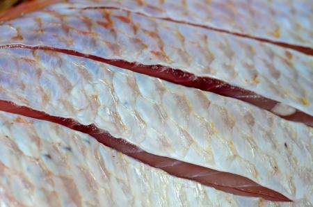 Skin Red nile tilapia fish (Oreochromis niloticus) background