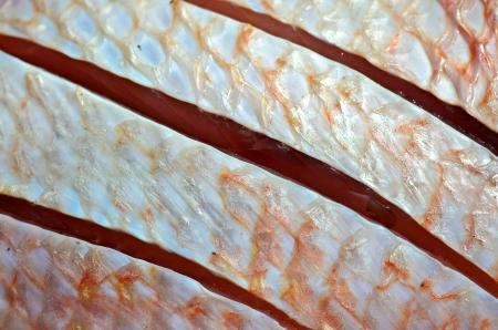 oreochromis niloticus: Red nile tilapia fish (Oreochromis niloticus) on bamboo basket